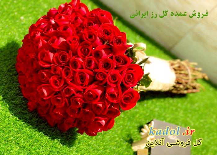 فروش عمده گل رز ایرانی در کرج