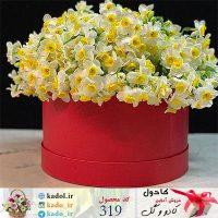 باکس گل نرگس گلبهار