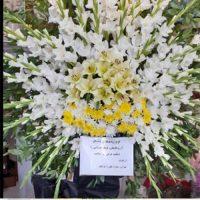 تاج گل لیلیوم و داوودی در کرج